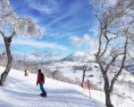 Spring Skiing Photo By Yuko Miyake1 2