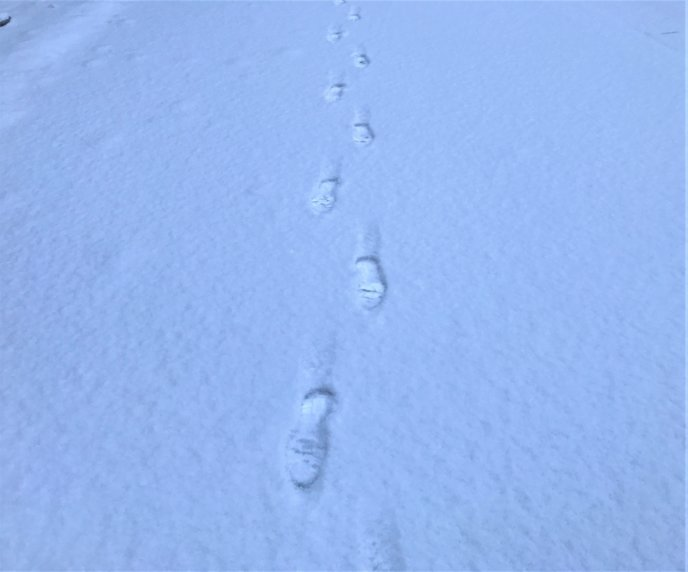 2017 March 28 Snowfall In Kutchan Towns Fresh Tracks In The Spring Snow