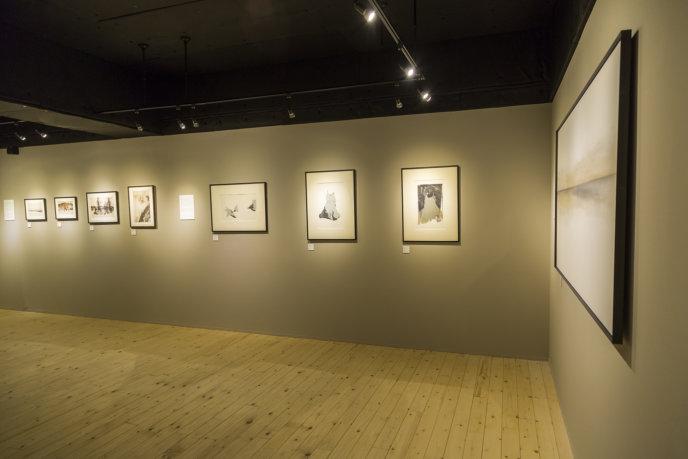 Kiyoe Gallery Current Exhibition