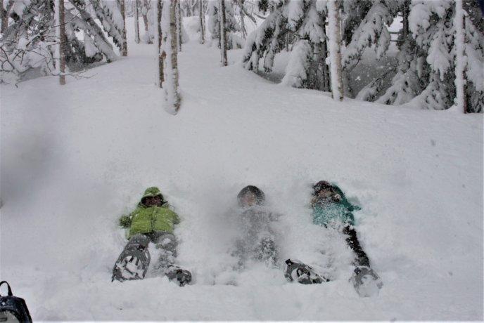 Nac Snowshoeing Niseko Day Time Snowshoe 31 Edit