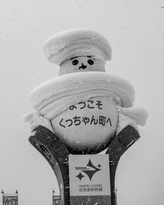 Snow Trucks Lr 5349