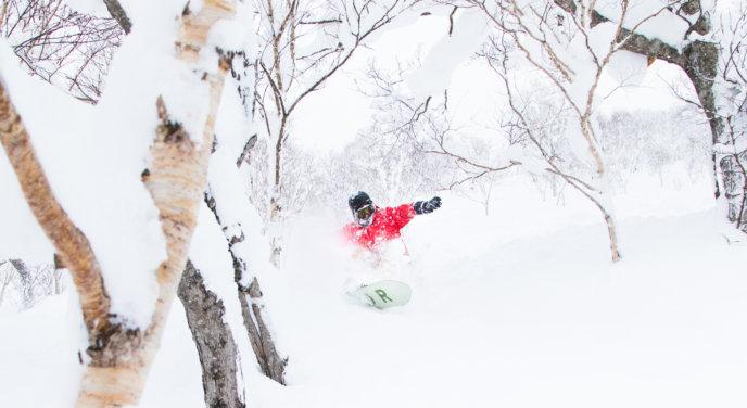 Snowboard Pow 12 29 17