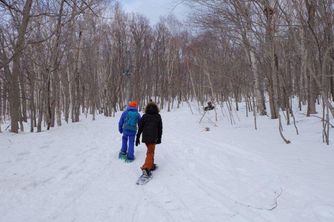 Spring Snowshoeing Clear Weather Snow Hiking Trekking