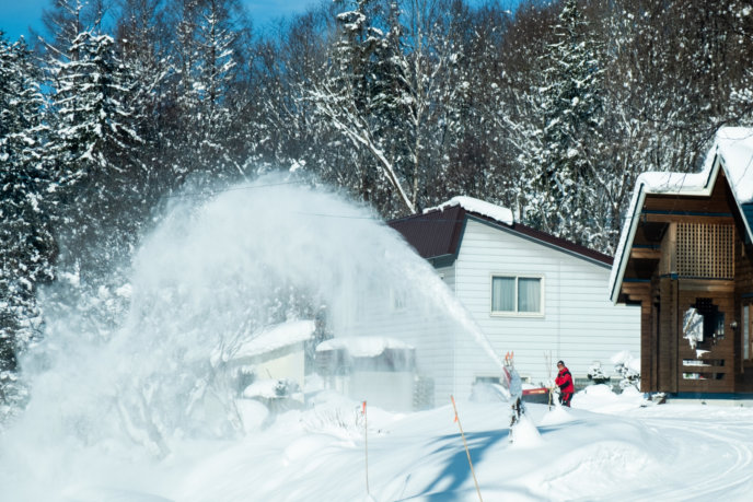 Winter Shots Lr 435