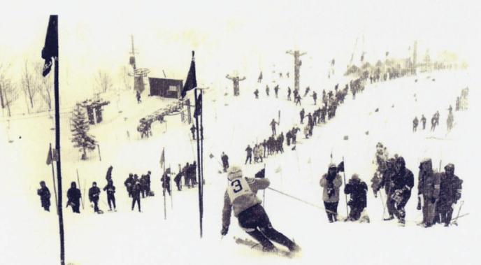 Alpine Race Niseko