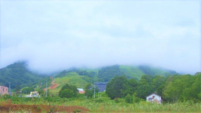 Mutusmi Miyake Intern Diary1