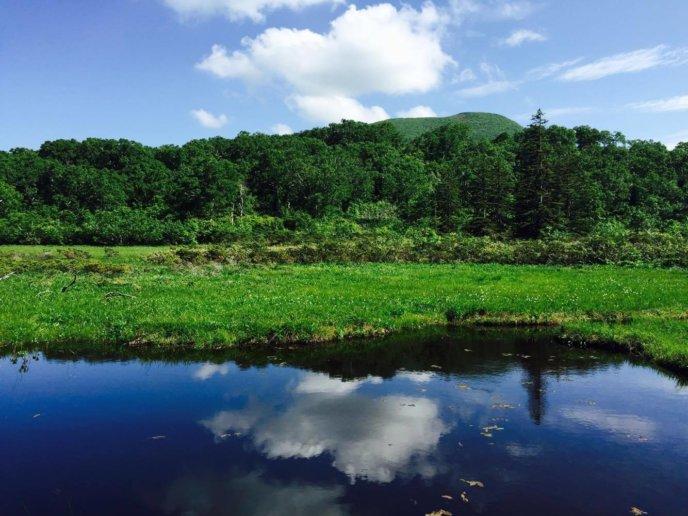 Shinsen Numa June 30 2016 Summer Blue Sky Green Trees Mirror Marsh