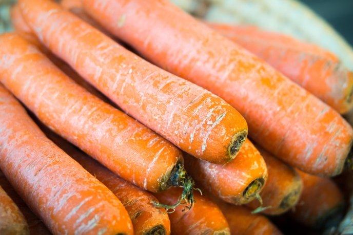 Winter Carrots Niseko Kyogoku Makkari Spring Food Vegetables