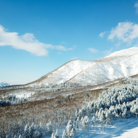 The Ultimate First-Timers Guide to Niseko in Winter