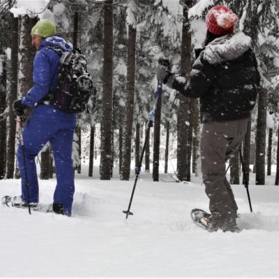Nac Snowshoeing Niseko Day Time Snowshoe 24 Edit