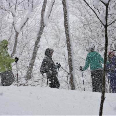 Nac Snowshoeing Niseko Day Time Snowshoe 28 Edit