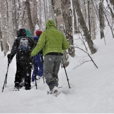 Nac Snowshoeing Niseko Day Time Snowshoe 2 Edit