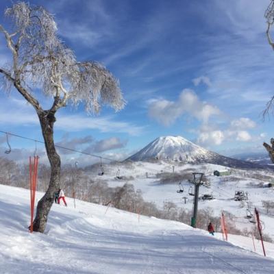 Niseko Annupuri International Ski Resort Winter Season 2 Ski Area Yotei Background Blue Sky 2016