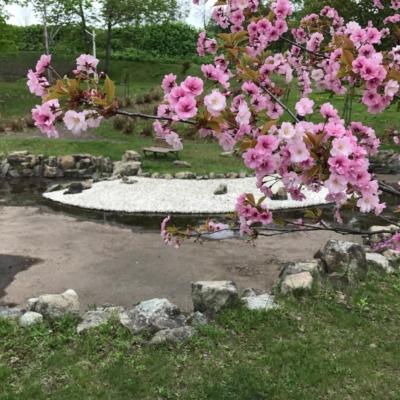 2017 05 22 Hirafu Niseko Spring Clean Up 18