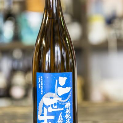 Blue Special Junmai Niseko Sake Brewery