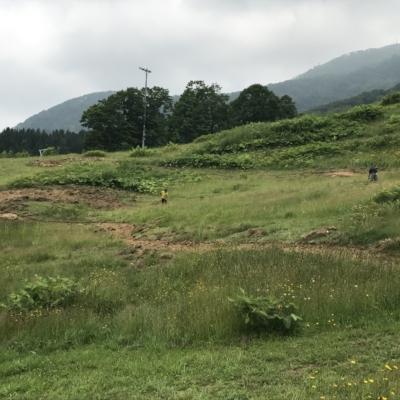 Hirafu Flow Trail Under Construction Summer July 2017 3