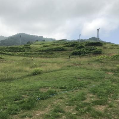 Hirafu Flow Trail Under Construction Summer July 2017 4