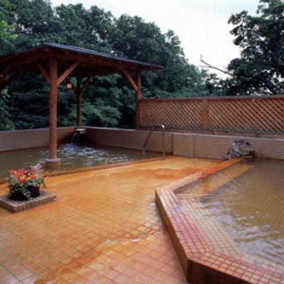 Niseko Grand Hotel Ladies Only Rotenburo Outdoor Pool