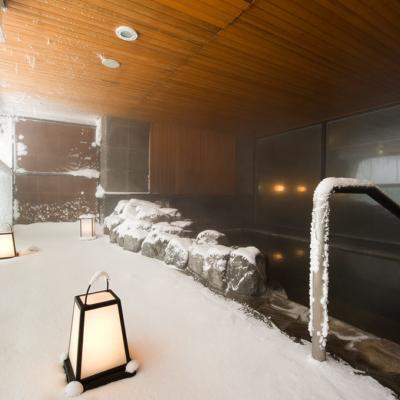 One Niseko Resort Towers Onsen Outdoor Bath Winter