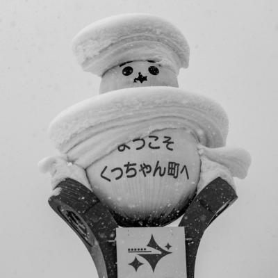 Snow Trucks Hr 5349