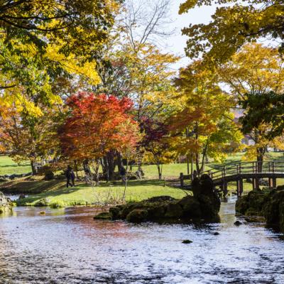ふきだし公園の秋
