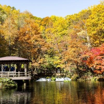 秋の京極ふきだし公園