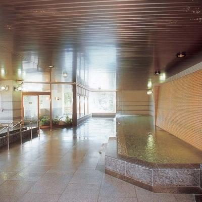 Hirafutei Large Indoor Onsen