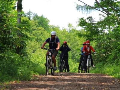 Mountain Bike Biking Trail Summer 26