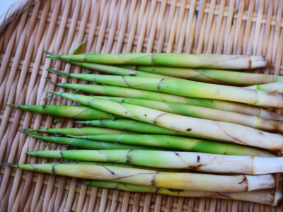 Himetake Bamboo Shoots Ac