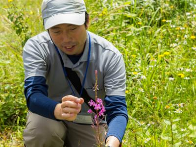 Tokyu Ace Hill Nature Walk Summer 2017 4