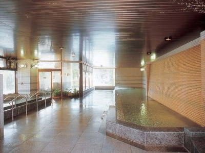 Hirafutei Large Indoor Onsen