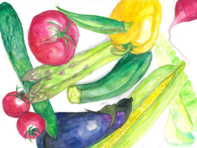 Niseko Local Vegetables Illustration