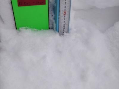 Snow Report 20190122
