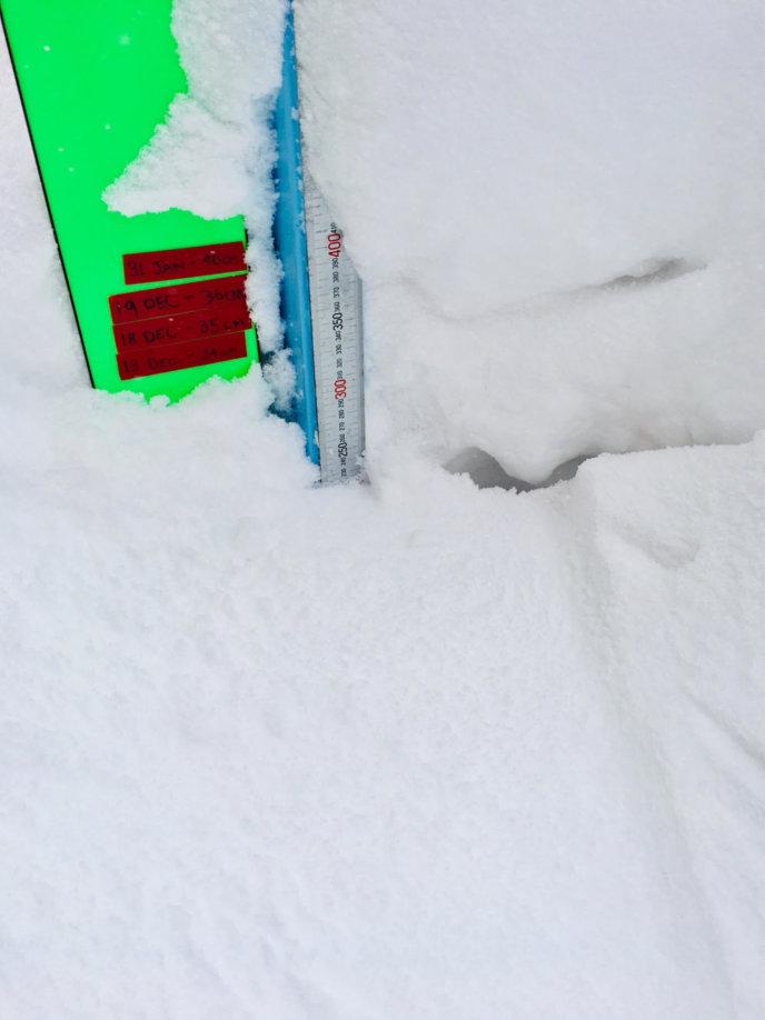 Snow Report 1 Feb2019