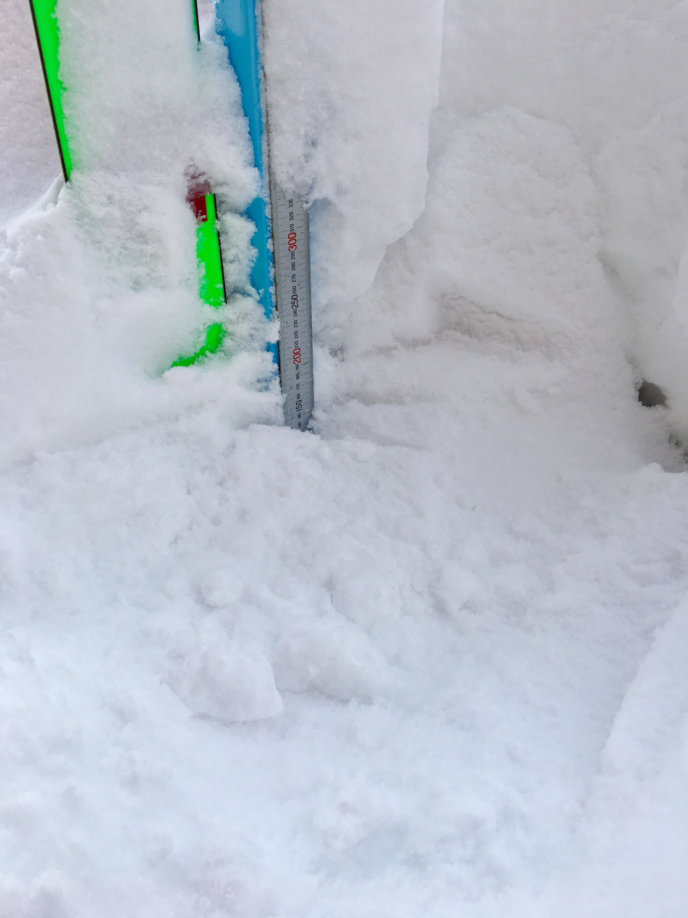 Snow Report 5 Feb2019