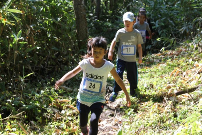 Trailrun 13