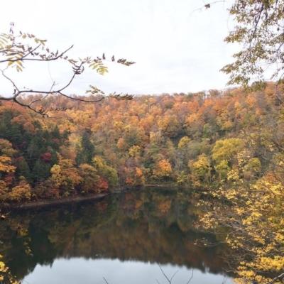 半月湖の紅葉