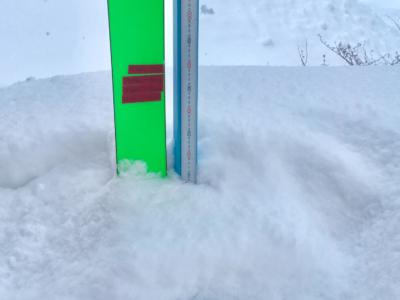 Snow Report 1 Jan2019