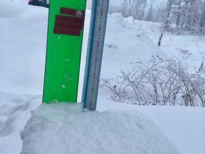 Snow Report 22 Dec2018
