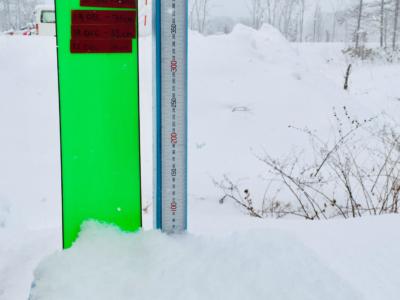 Snow Report 25 Dec2018